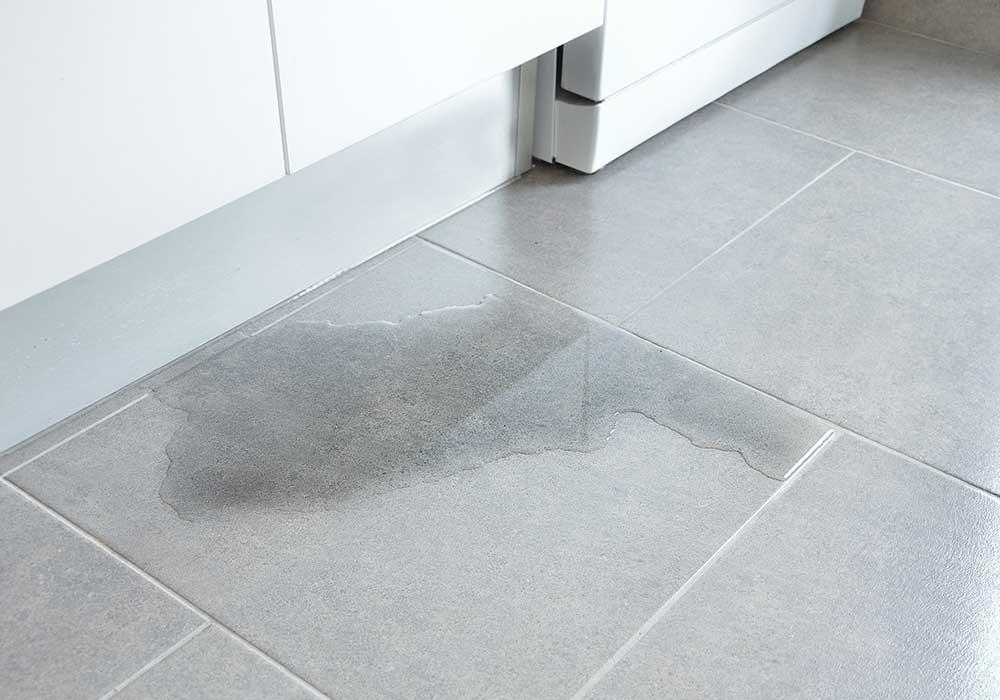 detect water leaks